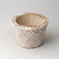 陶器製(2号ポット相当)多肉植物の欲しがる植木鉢  AASc-3349ピンク