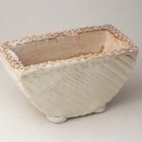 陶器製 多肉植物の欲しがる植木鉢 HMc-2710イエロー