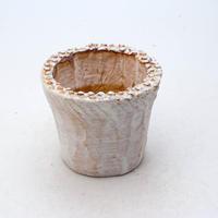陶器製(2号ポット相当)多肉植物の欲しがる植木鉢 NSSS-7169