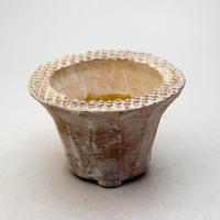 陶器製 多肉植物の欲しがる植木鉢 IBMd-9398