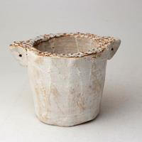 陶器製(2号ポット相当)多肉植物の欲しがる植木鉢 SSSd-2824