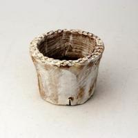 植木鉢 陶器(1.5号ポット相当)多肉植物の欲しがる植木鉢 SMSSc-2231イエロー