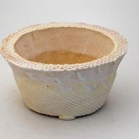 陶器製 多肉植物の欲しがる植木鉢 OZcd-9463イエロー