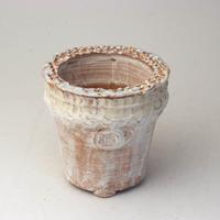 陶器製(2号ポット相当)多肉植物の欲しがる植木鉢 AAMcd-2759イエロー