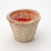 陶器製(2.5号ポット相当)多肉植物の欲しがる植木鉢 SMSc- 9173イエロー