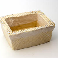 陶器製 多肉植物の欲しがる植木鉢 AES(II)cd-4699イエロー
