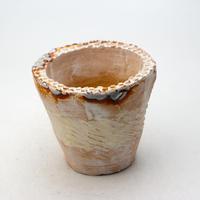 陶器製(2.5号ポット相当)多肉植物の欲しがる植木鉢 NSSc-9183イエロー