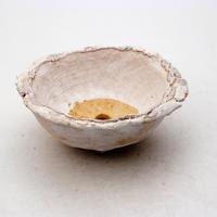 陶器製 多肉植物の欲しがる植木鉢 WM-7106