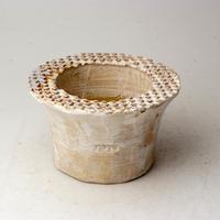 陶器製(2号ポット相当)多肉植物の欲しがる植木鉢 PSd-3109