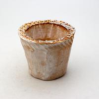 陶器製(2号ポット相当)多肉植物の欲しがる植木鉢 NSSS-9190