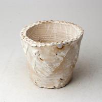 陶器製(2.5号ポット相当)多肉植物の欲しがる植木鉢 OPS-3326