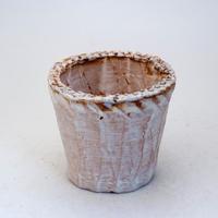 陶器製(2.5号ポット相当)多肉植物の欲しがる植木鉢 NSS-7732