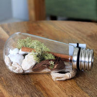 URBAN GREEN MAKERS TERRARIUM KIT #7