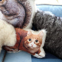 ANIMAL CUSHION