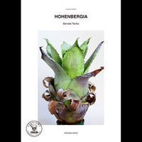 HOHENBERGIA -Serrate Tanks-  / ATSUSHI SATO