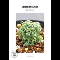 UNDERGROUNDS -CAPE BULB BOOK-  / FUMIO FUJIKAWA