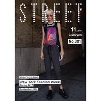 STREET No.301