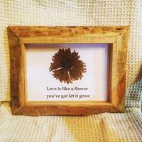 STYLE & ART flower art frame A4size