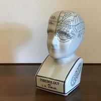 Vintage Phrenology Head