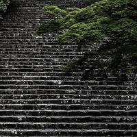 Japan vol.9
