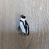 ピンバッジ(ケープペンギン)
