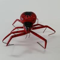 昆虫模型:蜘蛛