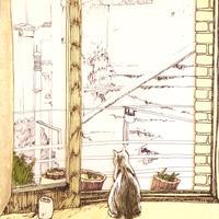 窓辺のネコ(A cat near the window)