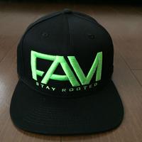 "FAM HAWAII ""LOGO"" Hat Black / Green"
