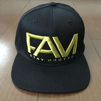 "FAM HAWAII ""LOGO"" Hat Black / Gold"