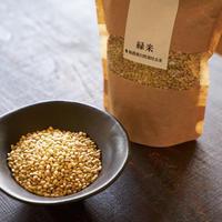 緑米(玄米) 300g