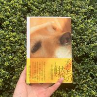 小説・太田靖久 写真・金川晋吾 |犬たちの状態
