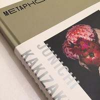 JUNICHI KAKIZAKI|METAPHOR