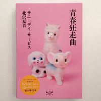 サニーデイ・サービス、北沢夏音|青春狂走曲
