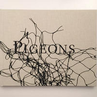 STEPHEN GILL| PIGEONS