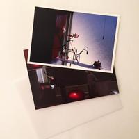 Haruka Akagi|花と部屋