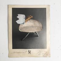村橋貴博|Icon-Mammal(コラージュ作品)