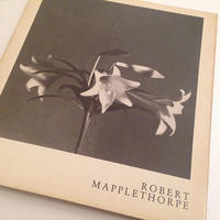 ROBERT MAPPLETHORPE|ROBERT MAPPLETHORPE