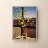 Yusuke Omata|一輪の花