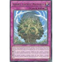 フランス語版 NECH-FR076 Naturia Sacred Tree ナチュルの神星樹 (レア) 1st Edition