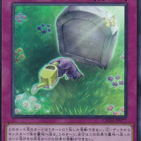 日本語版 CHIM-JP077 海外未発売 のどかな埋葬 (スーパーレア)