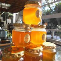 百花蜜(日本ミツバチの蜂蜜)100g