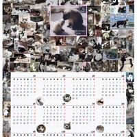 2020猫カレンダー