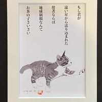 川上麻衣子猫イラスト画と言葉