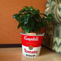 キャンベルスープ缶 バケツ Campbell Soup Can BUCKET