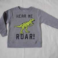 Dinosaur Fleece Lined Sweat Tops