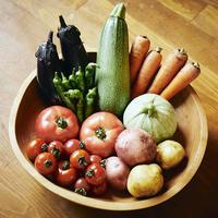 季節の採れたて無農薬無肥料野菜セット BY ごっつぁんファーム
