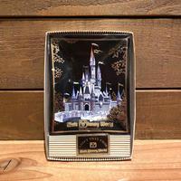 Disney WDW Glass Plate/ディズニー ウォルトディズニーワールド 小皿/200116-10