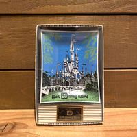 Disney WDW Glass Small Plate/ディズニー ウォルトディズニーワールド 小皿/200116-9