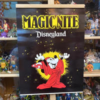Disney  Magic Nite Poster/ディズニー マジックナイト ポスター/210926-2