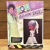 BEAKMAN'S WORLD Brain/Skull Plastic Kit/ビークマンズワールド ブレイン/スカル プラモデル/190306-1